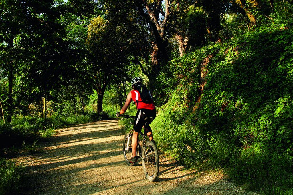 Un ciclista al camí a la Font de la Budellera. Parc Natural de Collserola