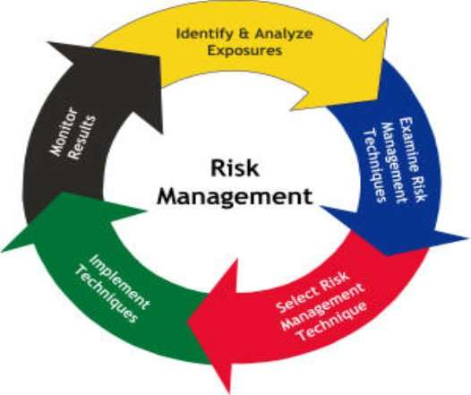 project risk management essay