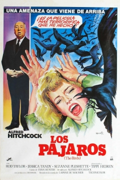 Poster Los Pjaros
