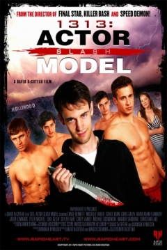 Poster 1313: Actor Slash Model