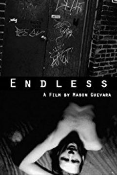 Poster The Endless
