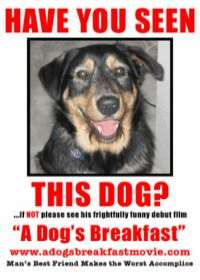 Poster A Dog's Breakfast