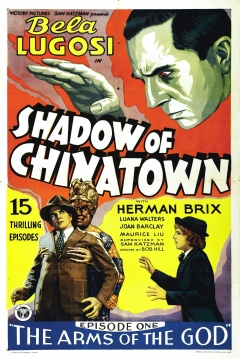 Poster Shadow of Chinatown