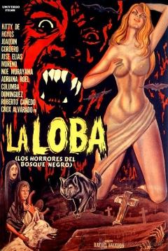 Poster La Loba