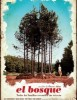 estreno dvd El Bosque