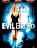 Evil breed: La leyenda de Samhain