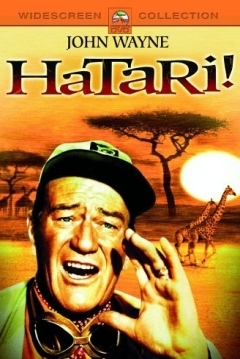 Poster Hatari!