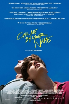 Ficha Call Me by Your Name
