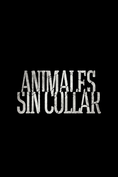 trailer de Animales Sin Collar