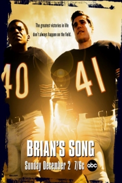Ficha Brian's Song