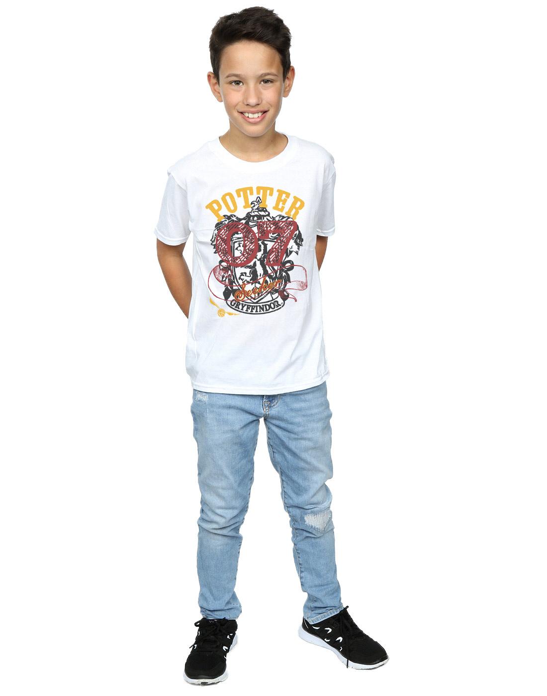 Harry Potter Boys Gryffindor Seeker T-Shirt