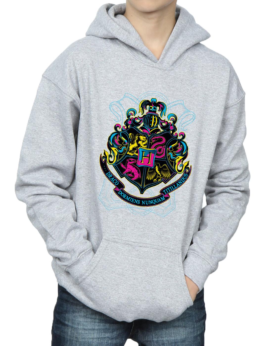 Harry Potter Garçons Fluo HOGWARTS crest hoodie