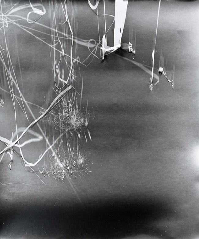 Klea McKenna, Grassland Photograms, LTVs, Lancia TrendVisions