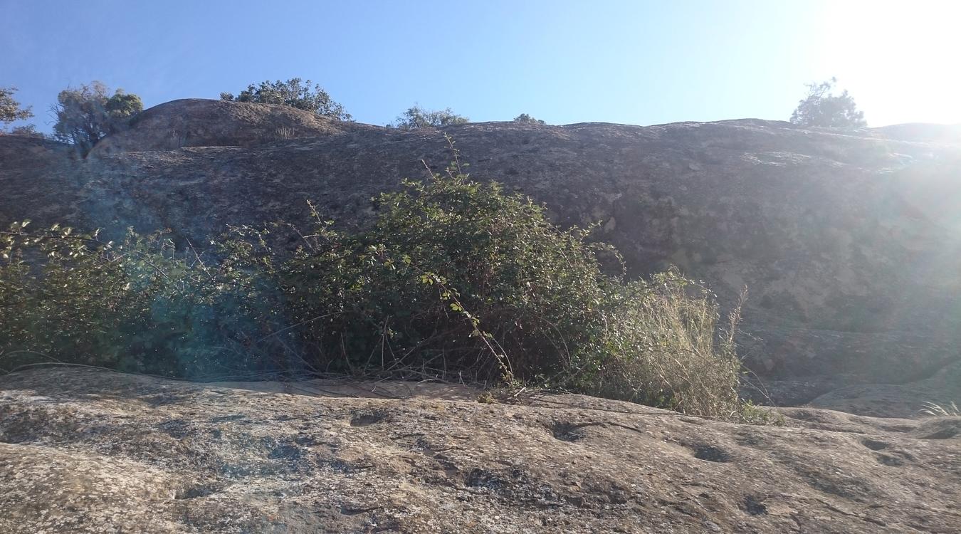 Alchups de la Sierra 2