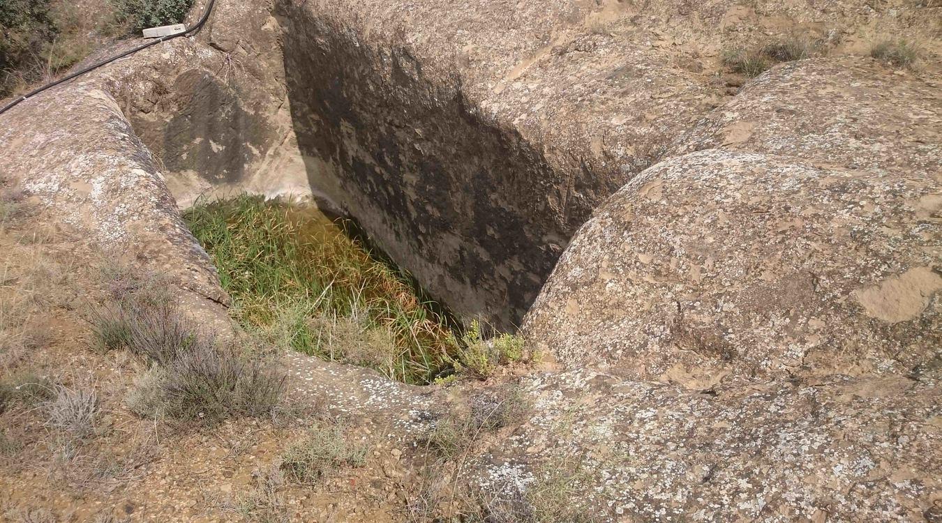 Alchup del Sabino