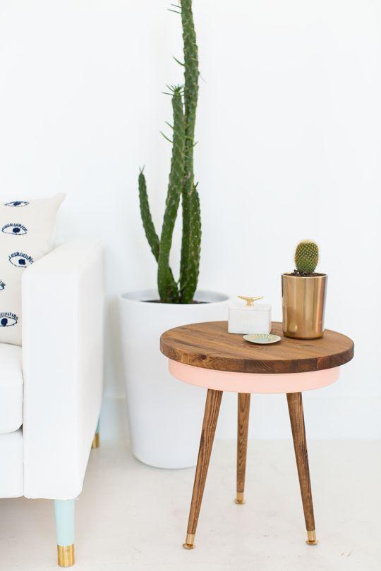 cactus-y-suculentas-5