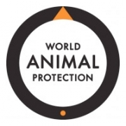 Worldanimalprotaction