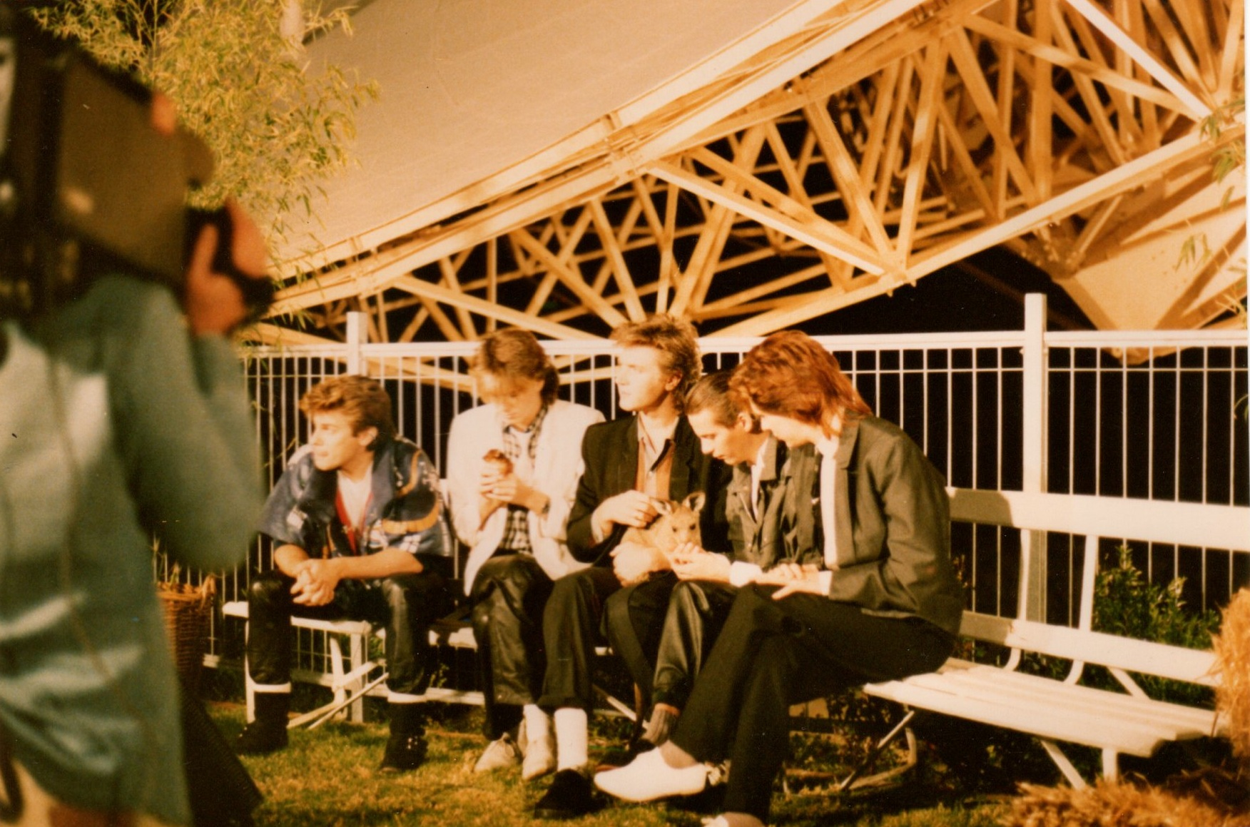 the band in the sydney zoo 1983