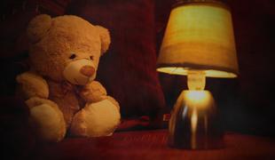 2606-quinten_de_meyere_the_bear_in_the_lost_woods_01