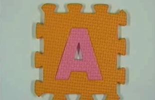 56-anima1