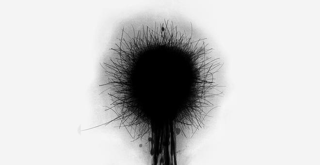 1511-dandelionstill01