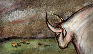 2893-vacas_cows1