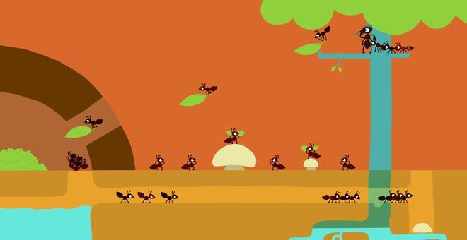 2458-ant_still_04