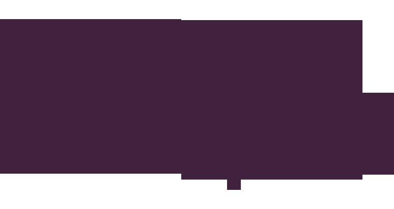 311-institut_francais