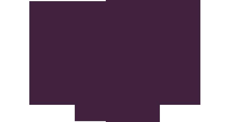 350-pedicab