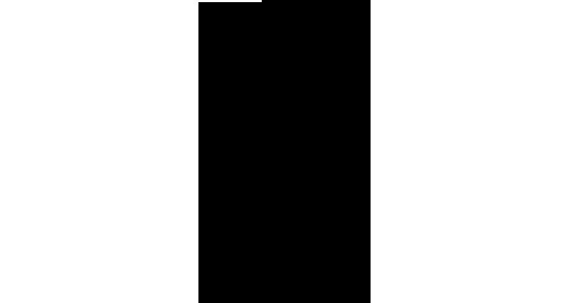 405-306_fer