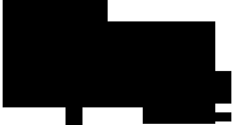 411-315_iic