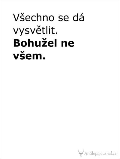 no. 2_L cz