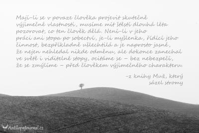 no. 23_L cz