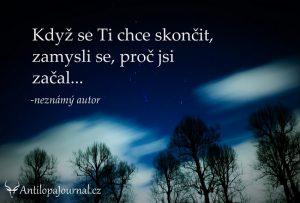 no51_L cz