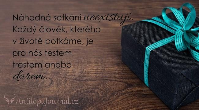 citat_89-cz