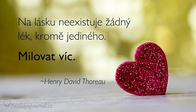 citat_94-cz