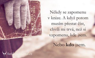 citat_96-cz
