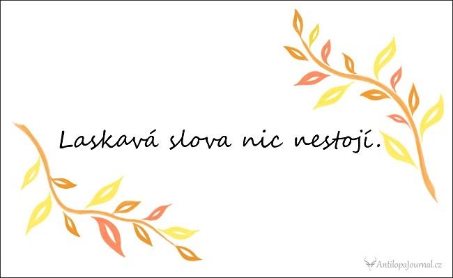 citat_104-cz