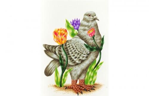 Saddo - The Dove (Porumbelul)