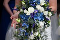Wedding colour 175 1