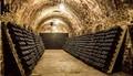 Visite Guidée de Reims Champagne en Petit Groupe au Départ de Paris