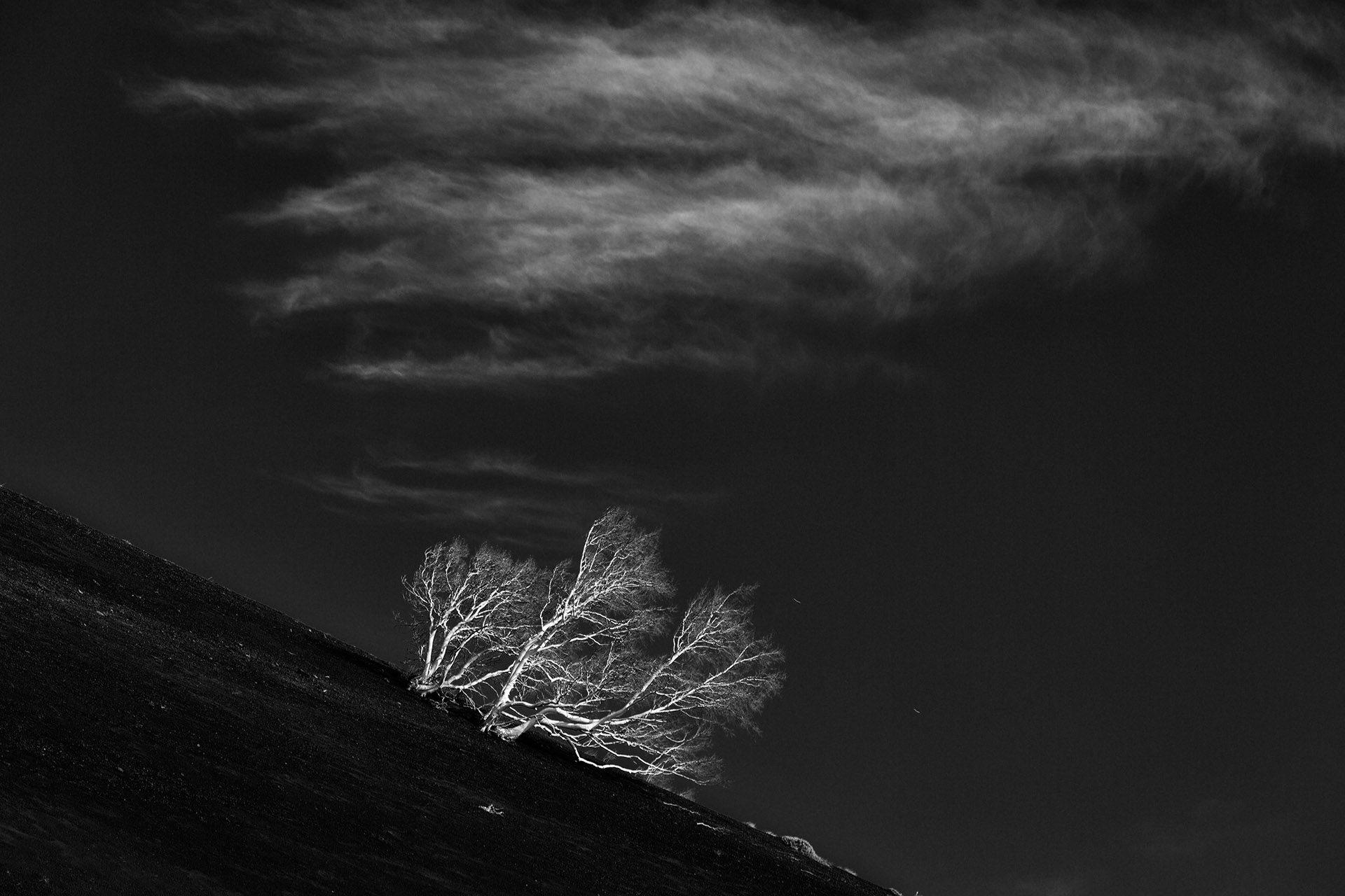 Black & White Photo Project