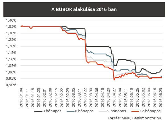 bubor160624