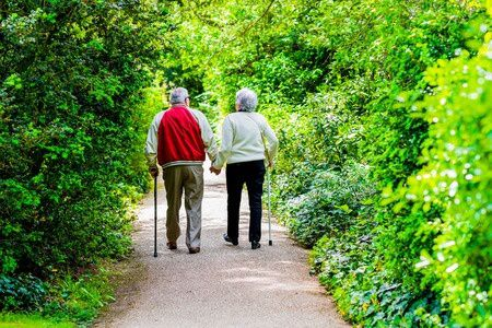 31332416 - a picture of an old couple strollingin the park