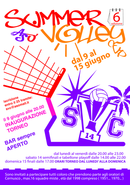 Summer volley 2014