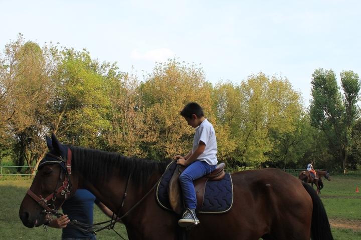 Open day con i cavalli: festa per i bambini