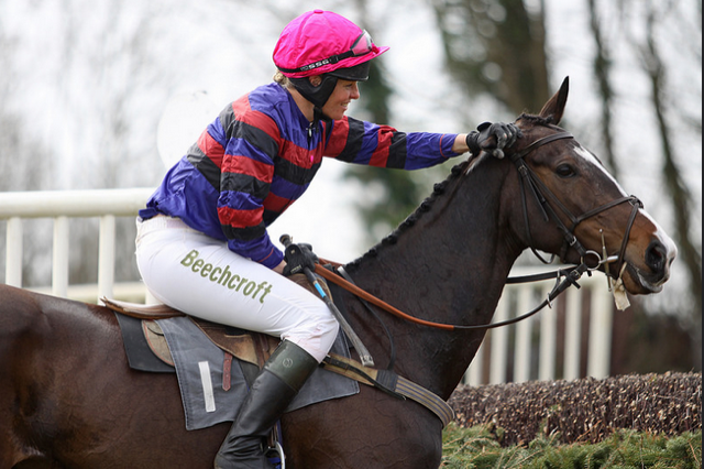 ARE YOU INTERESTED IN NATIONAL HUNT RACING?Beechcroft has been involved with several horses with great success 'Little Legend' won 14 Point-to-Points & 3 Hunter Chases