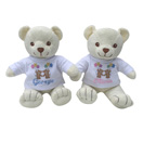 Photo of Personalised Teddy Bears for Twins