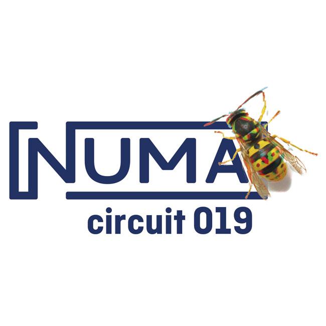 numa circuit 2019