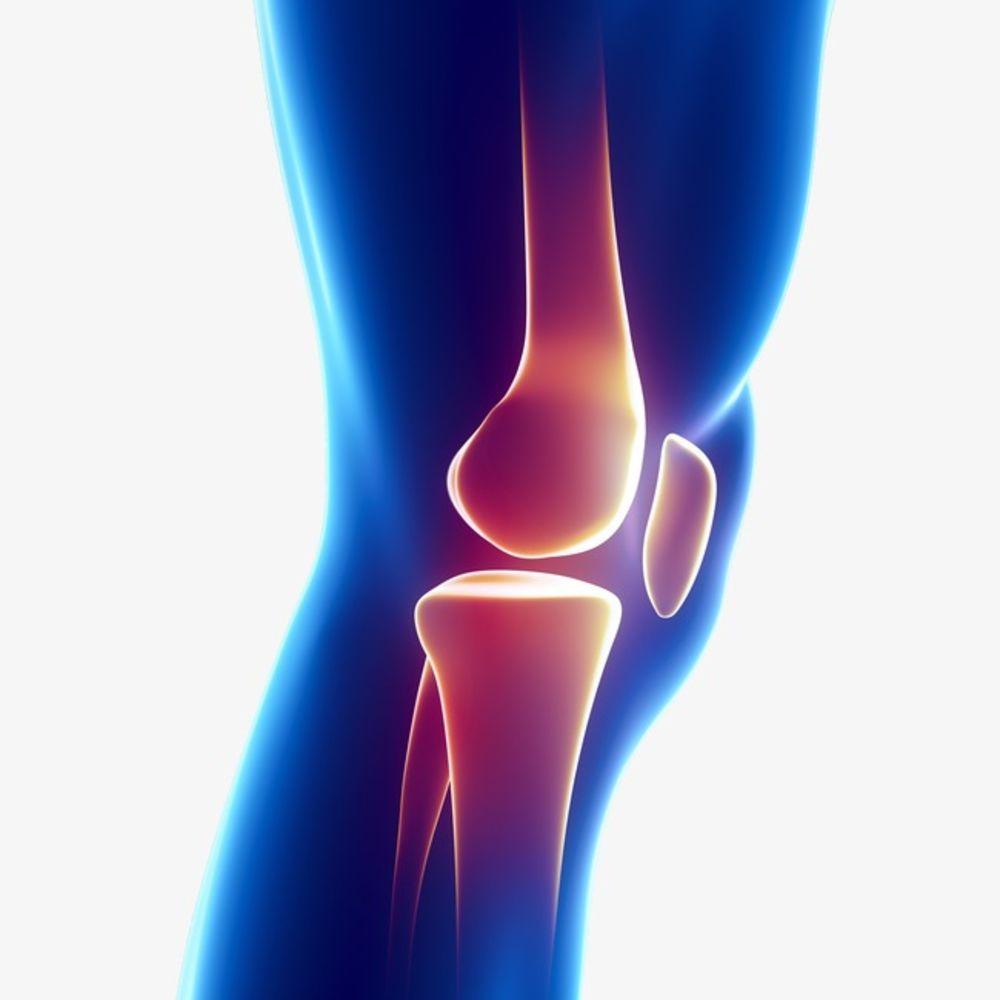Cómo mejorar nuestros tendones y ligamentos con Tenflex\' | Lagenda